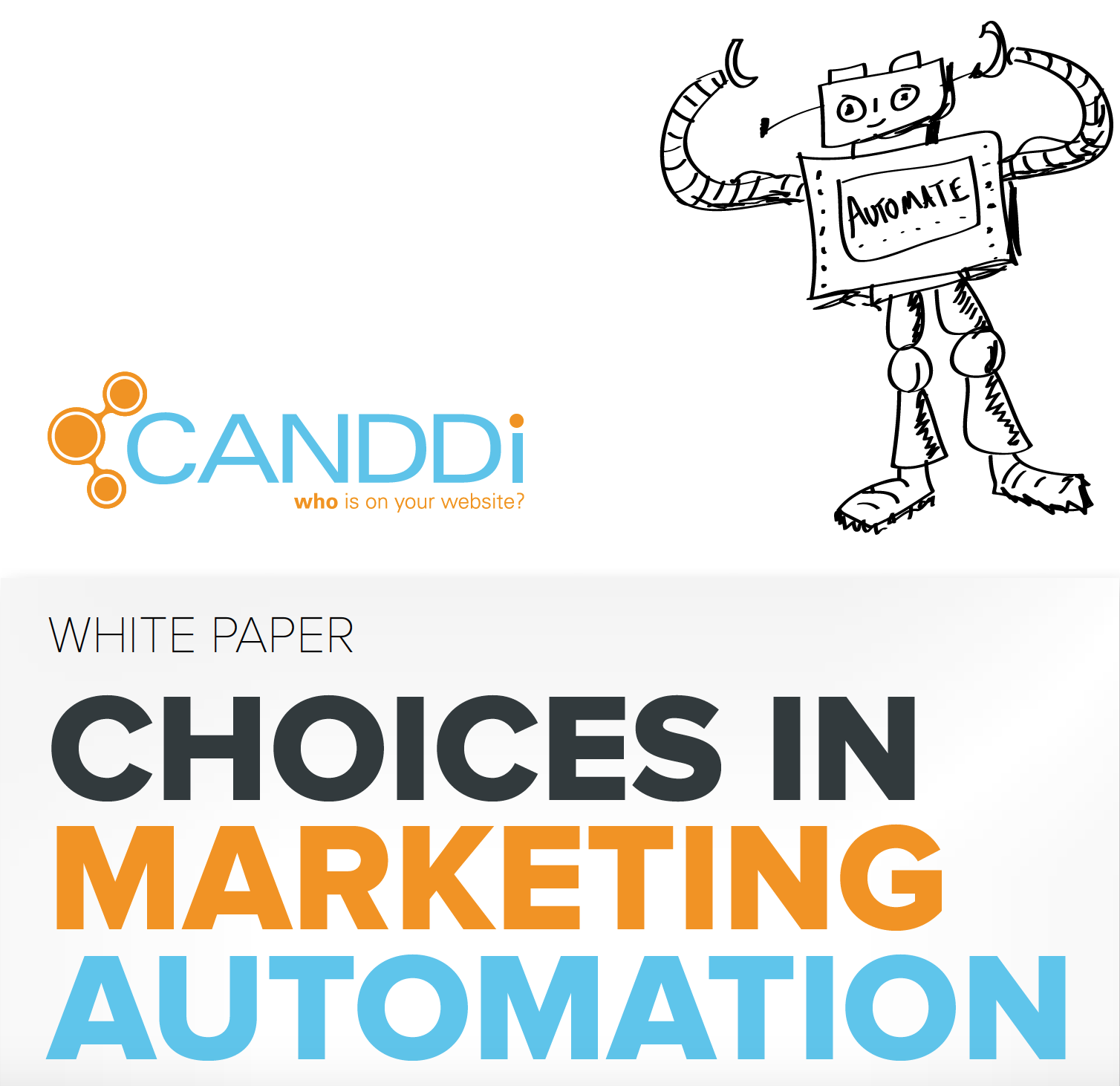Choices in Marketing Automation